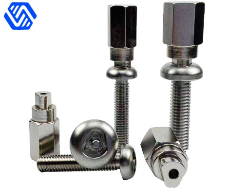 Irregular Shap Stainless Steel Anti Theft Bolt